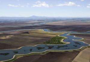 An aerial view of the Sacramento-San Joaquin Delta in California