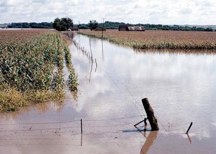 flooded-farmland