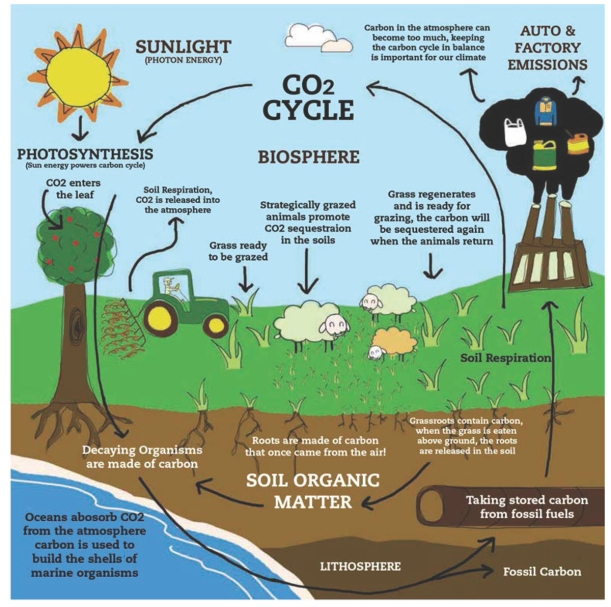 carbon-farming