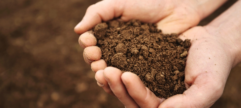 growing-our-farms-soil-in-hand
